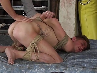 Hogtied for whipping and anal fucking